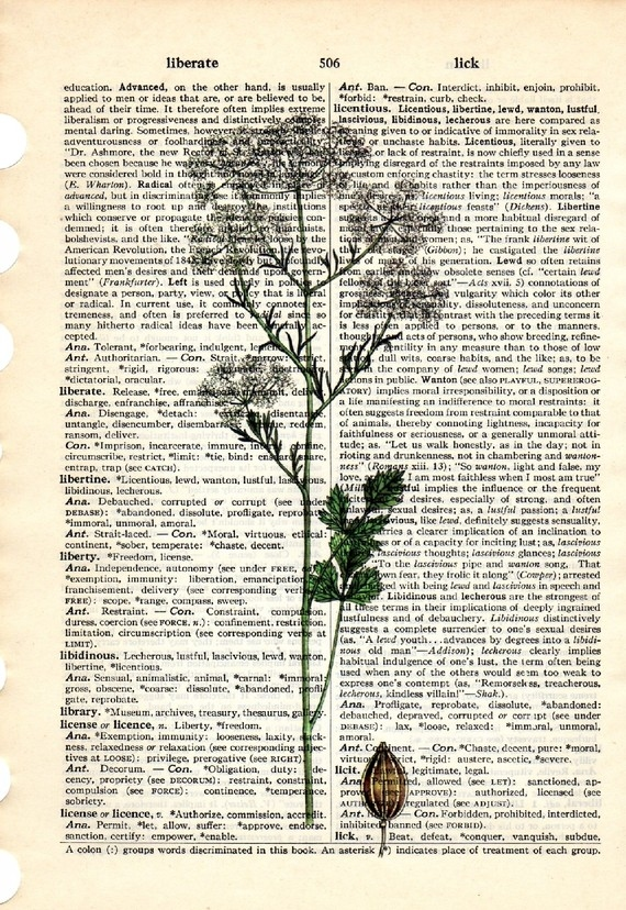 Dictionary Book Page Art print Anise herb