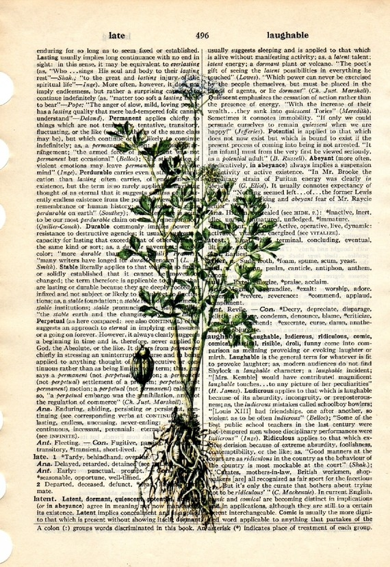 Dictionary Book Page Art print Celery herb